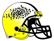 The Swarm