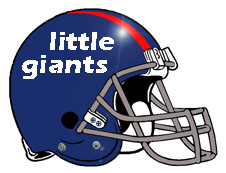 Little Giants Fantasy Football Helmet