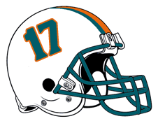 Number 17 Team Tannehill Fantasy Football Helmet