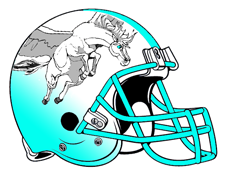 White Pegasus Fantasy Football Helmet