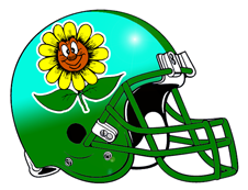 Crazy Sunflower Fantasy Football Helmet