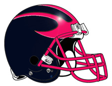 Michigan Football Helmet Navy and Pink