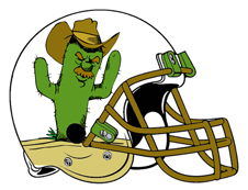 Team Ponderosa Fantasy Football Helmet