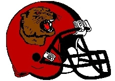 Cougars Fantasy Football Helmet Logo