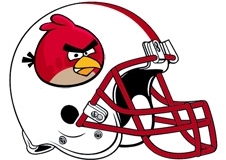 angry-birds-arizona-cardinals-helmet