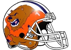 bear-with-football-jersey-fantasy-football-helmet-logo