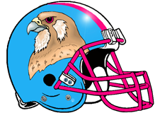 Falcons Fantasy Football Helmet Logo