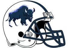 buffalo-fantasy-football-helmet