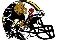 Bulls Fantasy Football Helmet Logo