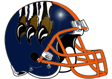 Chicago Bears Fantasy Football Helmet Logo