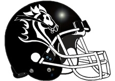 Knights Fantasy Football Helmet Logo