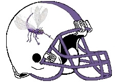 Dragonfly Fantasy Football Helmet Logo