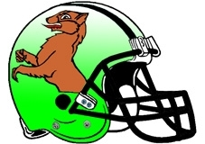 fighting-otter-football-helmet