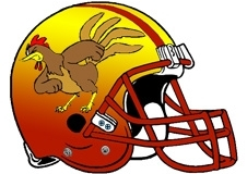 fighting-rooster-football-helmet