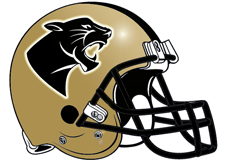 gold-panthers-fantasy-football-helmet