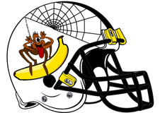 jon-gruden-spider-2y-banana-fantasy-football-helmet