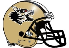 mad-angry-rabid-dog-fantasy-football-helmet-logo