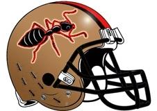 marching-ants-fantasy-football-helmet
