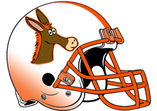 orange-donkeys-fantasy-football-helmet