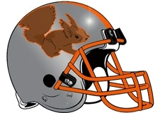 squirrel-fantasy-football-helmet