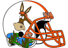 swamp-donkeys-fantasy-football-team-helmet