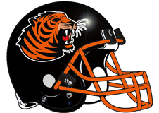 tiger-fantasy-football-helmet