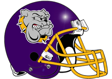 vikings-bulldogs-fantasy-football-helmet