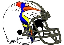 Woodpecker Fantasy Football Helmet