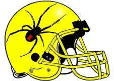 Black Widows Fantasy Football Helmet Logo