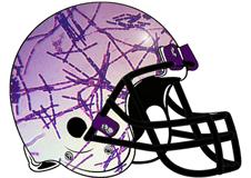 virus-fantasy-football-helmet